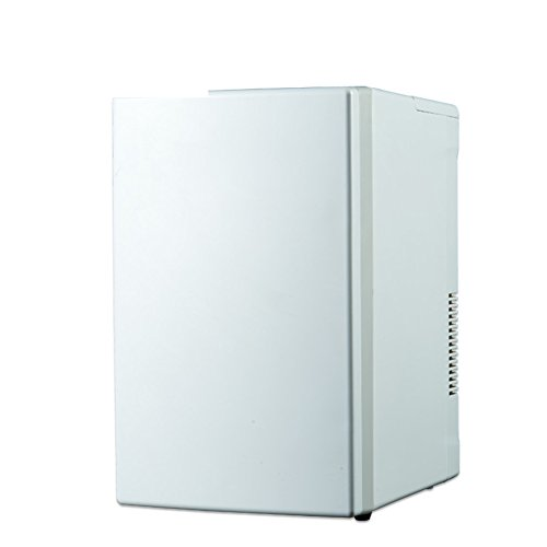 SL&BX Nevera Coche,Inicio albergue portátil Mini Nevera Alquiler Sala de refrigeración compresor...