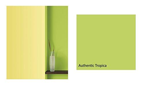 ✓ Wandfarbe Hellgrün Test Vergleich - Hier spielt die Musik - Top ...