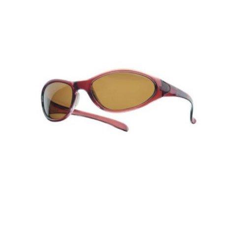 Balzer Polarisationsbrille Polavision 'Rom'