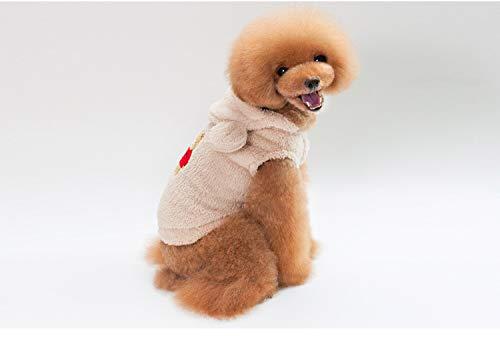 (PZSSXDZW Herbst und Winter Pet Kleidung Teddy Bichon Kleine Hundekleidung Tragen Sie eine Kapuzenjacke Off-White X-Large)