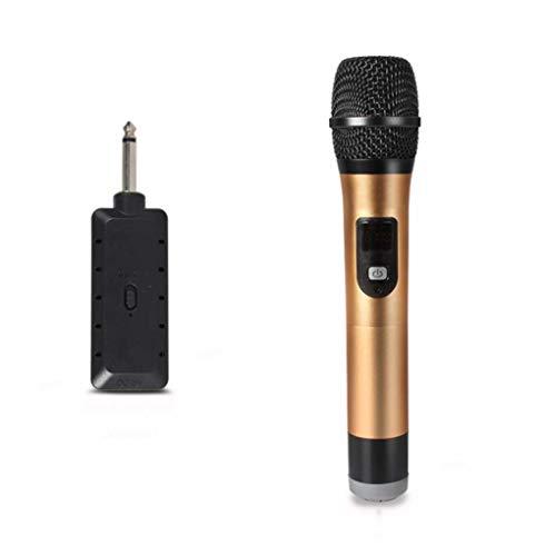 YWT Drahtloses Mikrofon Metallhandmikrofon Drahtloses Empfangssystem mit tragbarem Mini-Empfänger für Outdoor/Familie/Karaoke/Meetings/Hochzeit (Drahtlose Mikrofone Für Kirchen)