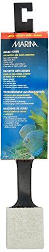 marina-deep-reach-algae-scrub-cleaner-large