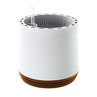 AIRY Pot - Luftreiniger Blumentopf Für Allergiker - Patentierter Pflanzen-Topf Als Natürlicher Raumluftfilter Gegen Schadstoffe, Haus-Staub, Pollen, Geruch (Gelb)