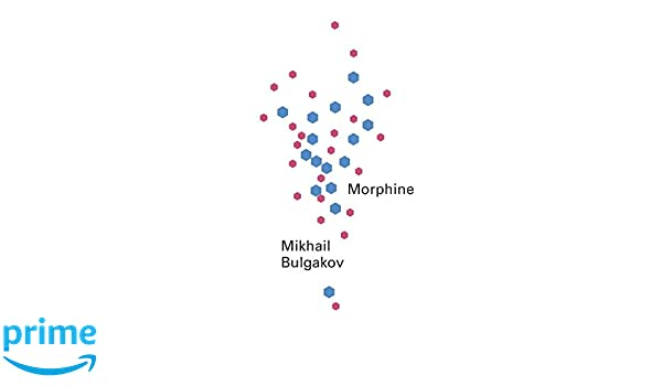 Buy Morphine (New Directions Pearls) Book Online at Low