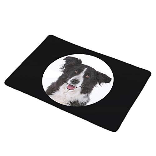 jingyuu Teppich läufer Flur Teppich jugendzimmer Jungen Karikatur Teppich eingangsbereich innen Teppich Flur läufer Teppich treppenstufen Teppich Hund Schwarz und weiß(1 pcs,40 * 60cm) - Treppenstufen Teppich, Teppich Läufer