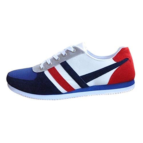 Sneakers Classic Plus Fashion Lace Up Mocassini sportivi Sneakers casual Scarpe basse in tela da uomo (45 EU,Blu)