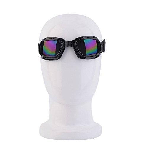 Hanbaili Schutzbrillen, sportliche Dual Pane Anti-Fog Goggle für Radfahren Ski Outdoor Action Sport (bunte Linse)