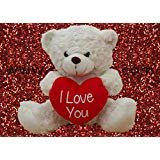 "White Teddy Bear holding Red Heart with ""I Love You"" written on it (White, 10.5"")"