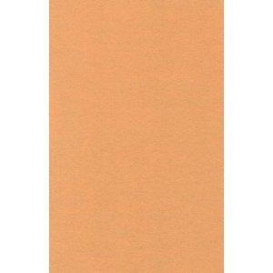 Filz Öko-Tex geprüft 60x90 cm Farbe 31/beige von BUDILA® auf TapetenShop