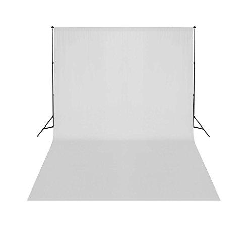 vidaXL Support de Fond de Studio Photo avec Fond Blanc 5x3m Photographie Vidéo