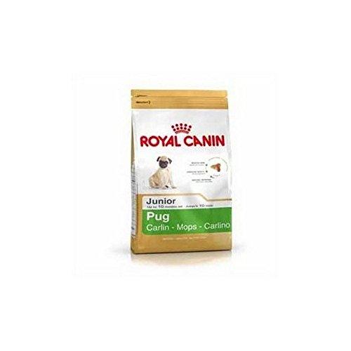 ROYAL CANIN Pug Junior (1.5kg) (Pack of 2)