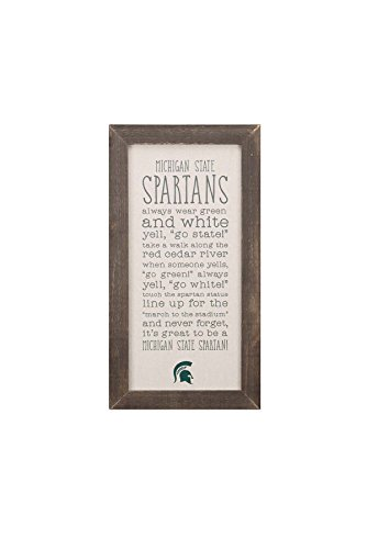 Glory Haus Michigan St Stoff Board, Multicolor