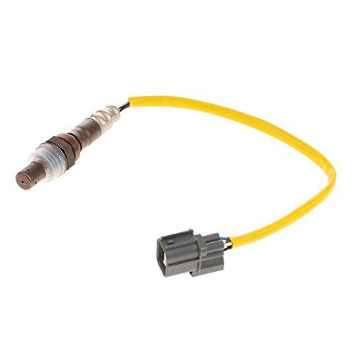 Preisvergleich Produktbild Homyl 36531-PLE-003 Autos VorderseiteLambdasonde Sauerstoffsensor Stromaufwärts