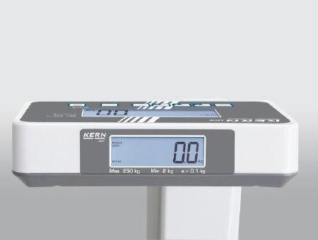 WCFD250 Balanza de Suelo MPE sin Medidor de Altura, Ámbito de Pesaje 250 Kg, Graduación 100 gr