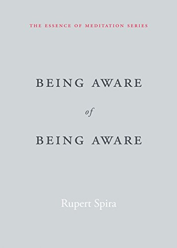 Being Aware of Being Aware: The Essence of Meditation, Volume 1 (Essence of Mediation)