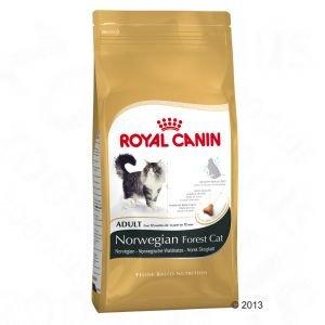 ROYAL CANIN Norwegian Forest Cat Adult - 400 - Norwegische Waldkatze Canin Royal