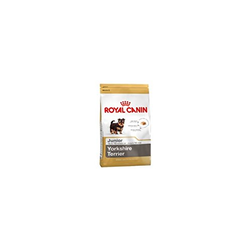 Royal canin Yorkshire junior - Pienso Yorkshire joven