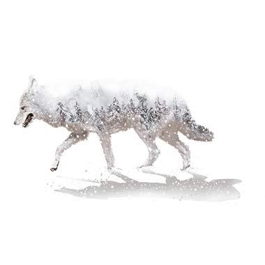 LETAMG Wandtattoos Schneeflocken Bäume Wandaufkleber PVC Material DIY Tierwandkunst Für Wohnzimmer Kinder Schlafzimmer Dekoration
