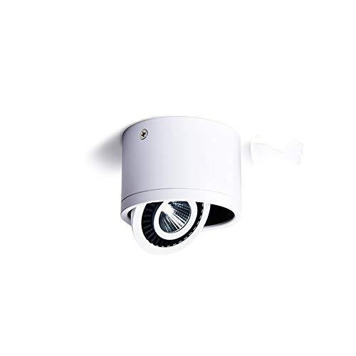 HviLit 3W drehbare LED Strahler Deckenanbau Zylinder Decken Panel Licht Kommerzielle Energiesparende Spot Lampen Wohnzimmer Eingangswinkel Einstellbare runde LED Panel Licht -