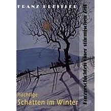 Flüchtige Schatten im Winter: Kurzgeschichten einer stürmischen Zeit