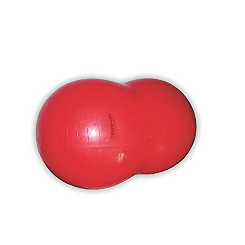 "Gymnic ""Physio Roll – Exercise Balls & Accessories"
