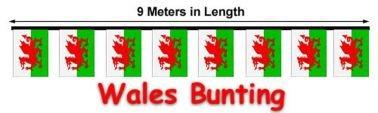 Drapeau du Pays de Galles 9 m fanions, , 9 Meters