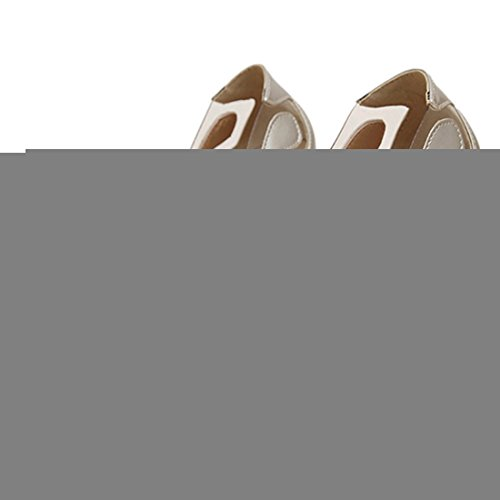 Oasap Damen Transpartent Obermaterial Spitz Stiletto Pumps Silber