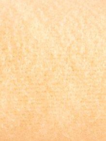 Unisex Microfaser-Flausch Spannbettlaken Microfaser-Flausch 90x190,100x200 by Webschatz vanille
