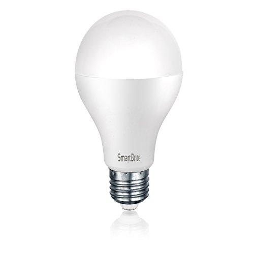 1-best-rated-led-non-dimmable-light-bulb-9-watt-led-light-bulb-900-lumens-non-dimmable-edison-screw-