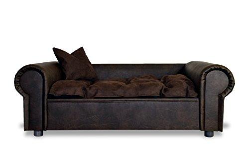 Hundesofa COLUMBUS Chesterfield XXL Büffelleder Kaffee Hundebett NEU - 3