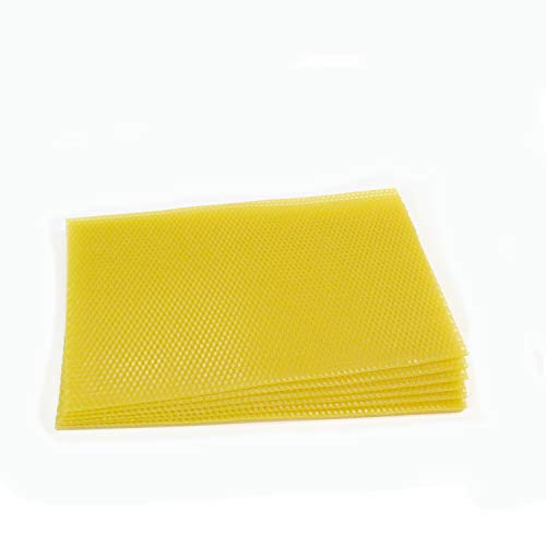 National Beehive unverkabelte flach Super Wachs Foundation Blatt–10Blatt