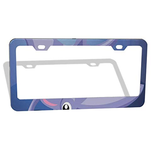 FunnyCustom License Plate Frame Stingray Fish Under Water Creative Aluminum License Plate Set Metal Tag Holder 12 x 6 Inch 2 Packs