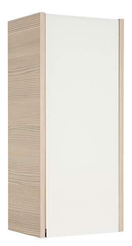 Fackelmann 83413 Hängeschrank Viora, 1 Tür, Türanschlag links, 2 Glaseinlegeböden, BxHxT: 30 x 67 x 22 cm