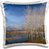 VWPics Nature Spain - Mediano Dam. Sobrarbe. Huesca. Aragon. Spain - 16x16 inch Pillow Case