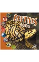 Reptiles: Que es un animal? (Que Es Un Animal? Biblioteca Del Descubrimiento/what Is an Animal? Discovery Library)