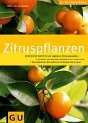 zitruspflanzen-gu-praxisratgeber-garten