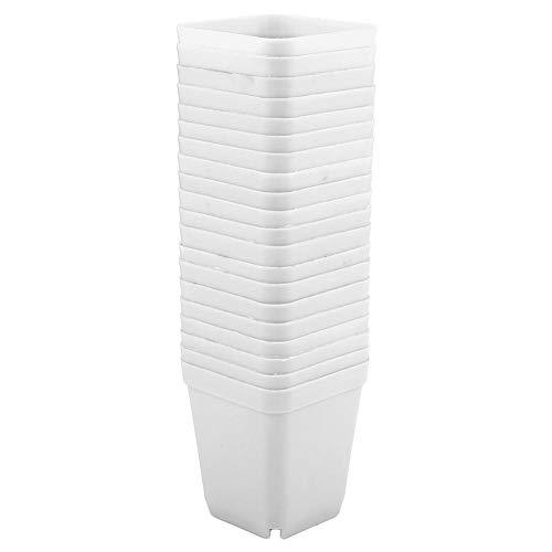 20 vasi in plastica per piante grasse, mini vasetti quadrati, perfetti per giardiniere