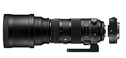 SIGMA ZA954 - Kit de lente para Canon SIGMA 150-600mm F5-6.3 Sport +TELE CONVER.TC-1401, color negro
