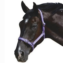 roma-headcollar-leadrope-set-black-cob