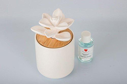 Cuorematto - profumatore con base cilindrica in ceramica lucida bianca con tappo sottile in legno naturale e diffusore a forma piccola pianta grassa in gesso,incluso di essenza e confezione regalo(h 7,5 cm) - bombonire nozze,matrimonio (kit 1 pz + confezione)