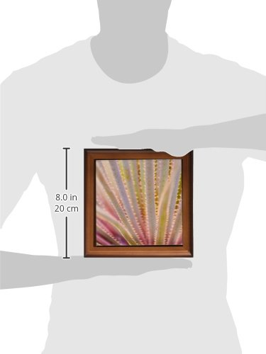 3dRose Yucca-Palme, Close-up-Mexico-Trivet, 20cm, Keramik, Braun, 19,05x 2,28x 19,05cm
