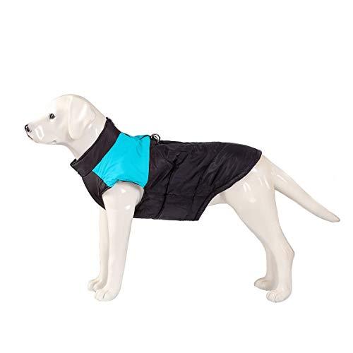 Techrace Wasserdichte Hundejacken Weste, Winter Haustierkleidung|Hunde Baumwollmäntel |Reflektierend Daunenjacke Mäntel | Hunde OutfitsPet Protector für Kleine mittlere Hunde Welpen - Blau, S -