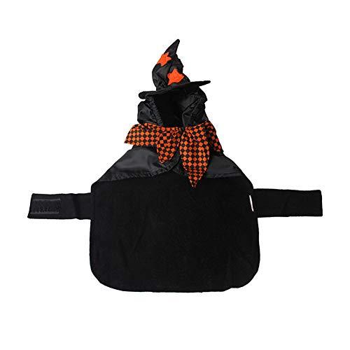 Hundebekleidung, Halloween, lustig, warm, Katze, Assistent Hut mit ()
