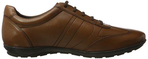 Symbol Uomo Geox Braun Sneaker Cognac B Herren FFEqO