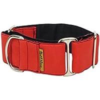 ThePetLover TPL150008 Collar Martingale para Perros, L, Rojo y Negro