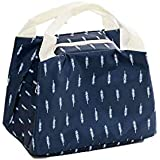 Millenial Chic Unisex Polyester Tote Multi-Purpose Lunch Bag/Tiffin Bag/Storage Bag, Gorgeous Blue