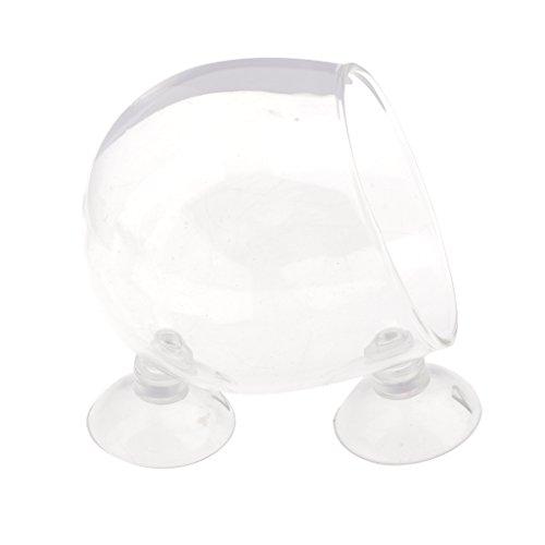 MagiDeal Aquarium Deko Glasbecher Vase mit Saugnapf für Pflanzen Wasserpflanze Fisch Tankhalter Aquarium