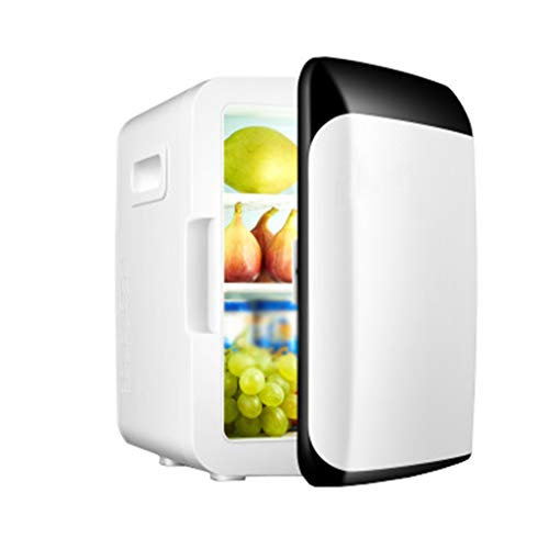 Refrigerador Vertical Del Coche 10L Refrigeración Y Calefacción Del Coche Caja Hogar Refrigerador Pequeño Refrigerador X2