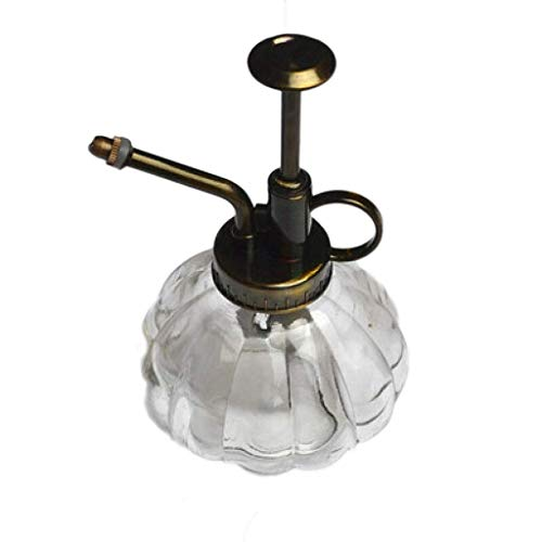 LYATW Blumen-Wasser-Spray-Flasche kann Topf  Vintage Kürbis Stil Dekorative Glas Pflanze Atomizer Gießkanne-Topf mit Top-Wärmepumpe for Innentopfpflanzen Terrarien Blumen (Multi-Color optional) -