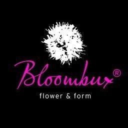!!WELTNEUHEIT!! Bloombux® – flower & form by INKARHO® 25 – 30 cm breit im 2 Liter Pflanzcontainer
